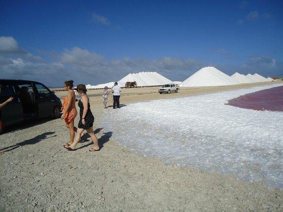 Voyager Bonaire Tours: Salt mountains, Bonaire