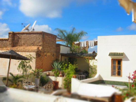 Riad Le Coq Berbere: un piccolo scorcio delle terrazze