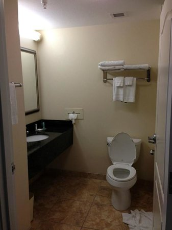 Comfort Inn & Suites Tifton: bathroom