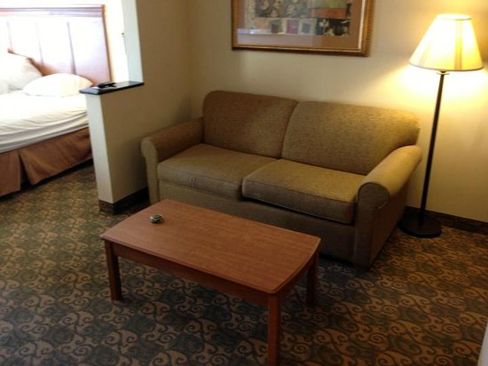 Comfort Inn & Suites Tifton: couch