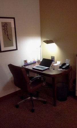 Hyatt Place Bush Intercontinental Airport: Work Area in Room