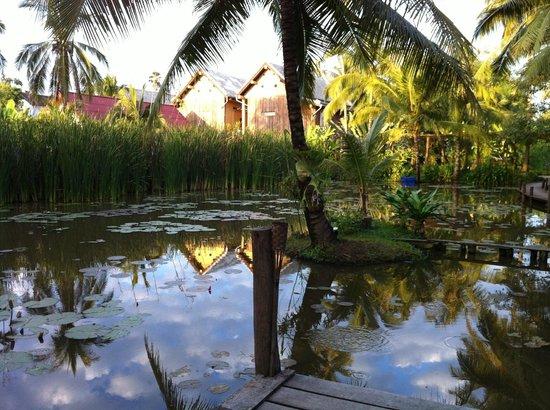 Maison Dalabua Hotel: pond