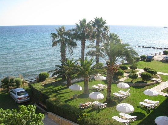 Anemona Beach Hotel : Garden