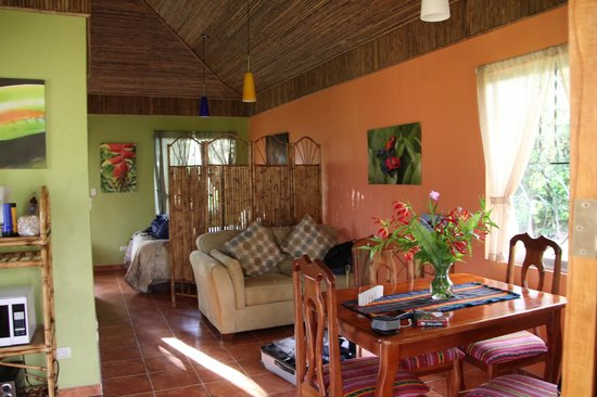 Toucan Rescue Ranch: This is the studio guest house. Eating area and bed behind screen.