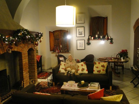 Albergo Duomo: House cat and I enjoying the Christmassy ambiance of the livingroom