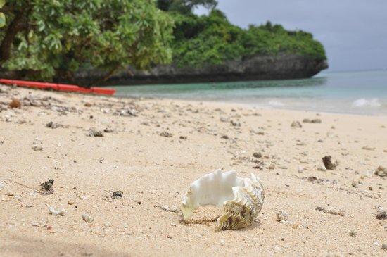 """Sandy Beach Resort: Paradies für Strand""""läufer"""""""