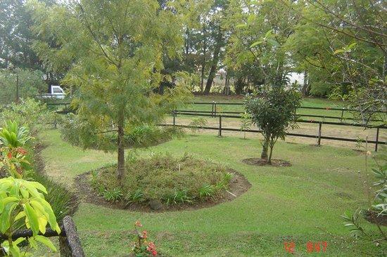 Jardin picture of rancho constanza constanza tripadvisor for Jardin kennedy
