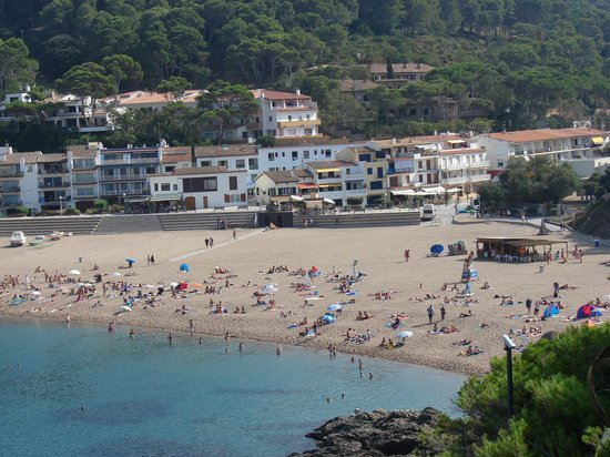 Beach Sa Riera with the hotel Sa Riera on the background between pines