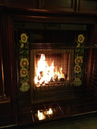 YHA Grasmere Butharlyp Howe: This fire made this stay perfect