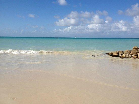 Buccaneer Beach Club: spiaggia di fronte al Buccaneer