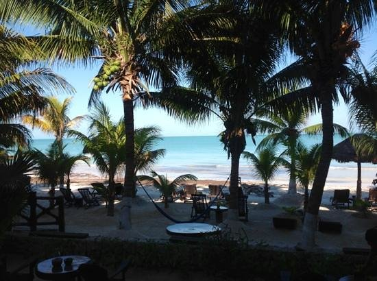Beachfront Hotel La Palapa : view from the room
