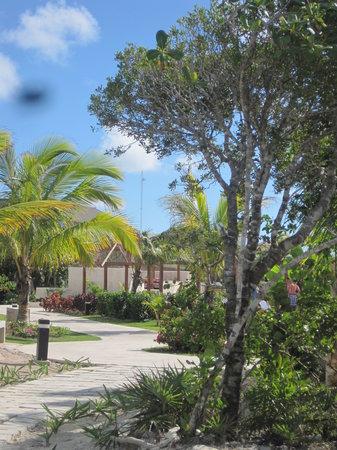 Royalton Cayo Santa Maria: Garden view/Vue jardin