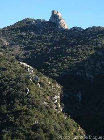 Chateau de Queribus: Vue depuis la route de Cucugnan
