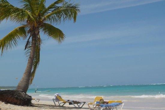Ocean Blue & Sand : Plage de l'hotel