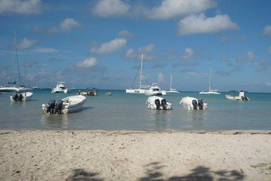Ocean Blue & Sand : Départ Excursion Ile de Saona