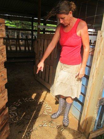 Aletta's Goat Farm: Aletta