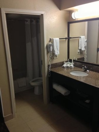 Holiday Inn Express Hotel & Suites Midtown: restroom