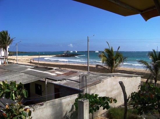 casa los delfines: Dolphin House Ocean View