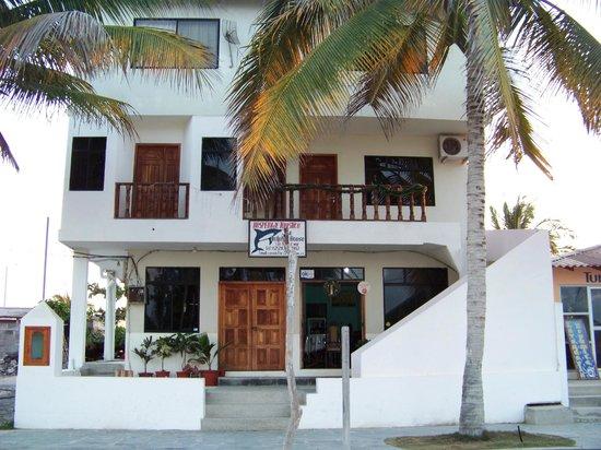 Casa Los Delfines: Dolphin House