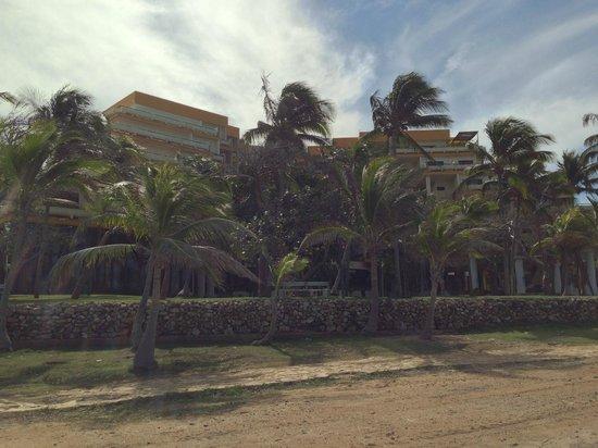 Melia Varadero: Hotel from Garden