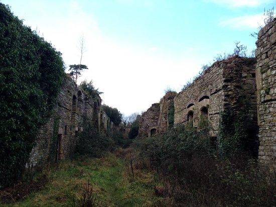 Thornbury Castle and Tudor Gardens: Ruins at Thornbury