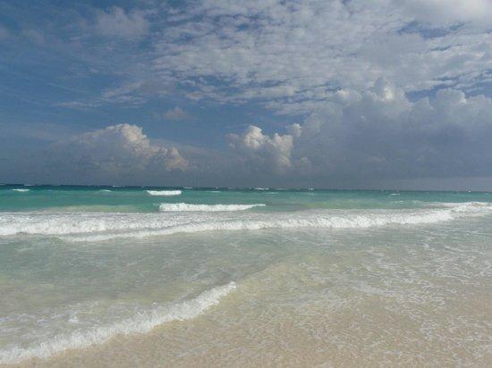 Las Palmas Maya: beach