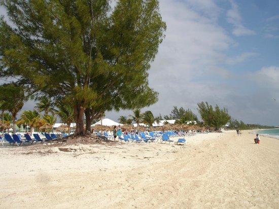 Viva Wyndham Fortuna Beach: nice beach