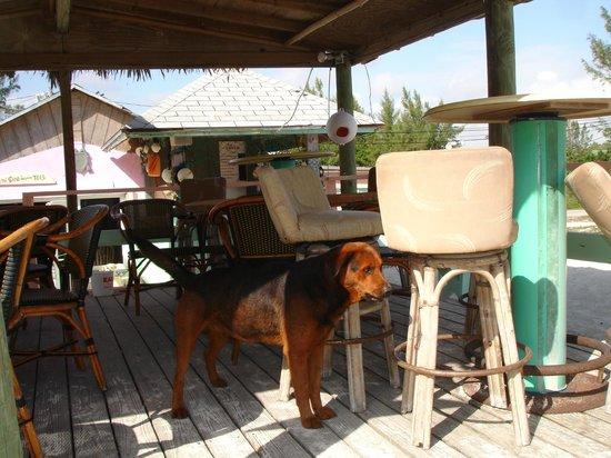 Margarita Villa: the deck