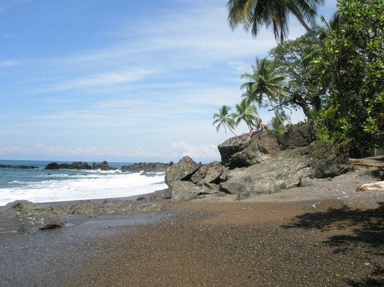 Aguila de Osa Inn: Our private beach