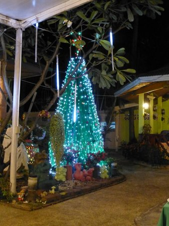 Eden Bungalow Resort: Xmas tree