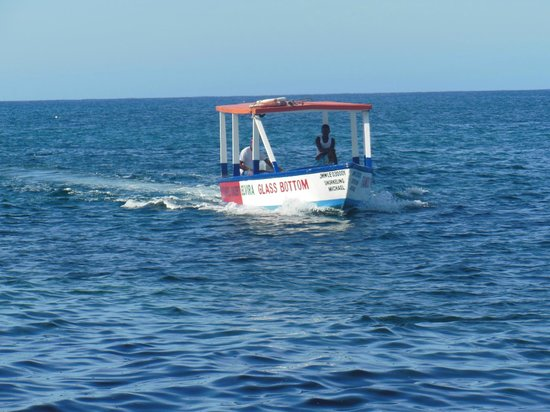 Famous Vincent Glass Bottom Boats: Here they come!!