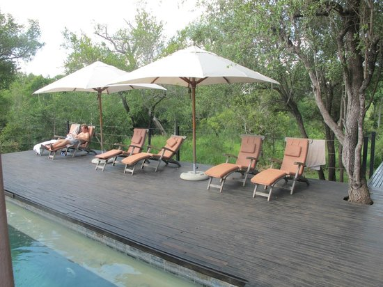 Honeyguide Tented Safari Camps : pool area
