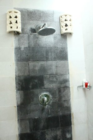Jas Boutique Villas : shower in master bedroom