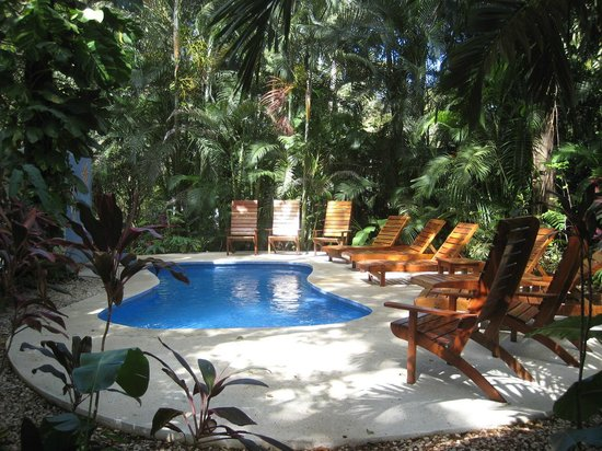 Nosara Paradise Rentals: Secluded pool