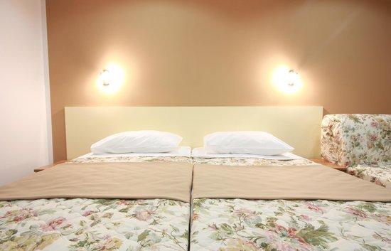 Hotel Sali: Brown room