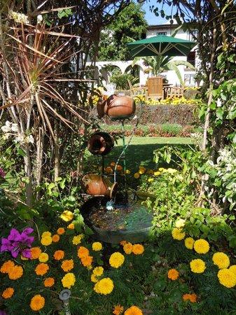 Hotel Mansion del Cupatitzio: Agua circulando por jarros.
