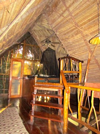 Cotton Tree Lodge: Main level Jungle Cabana