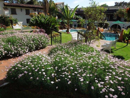 Hotel Mansion del Cupatitzio: Flores de jardines.