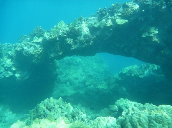 Maluaka Beach: a beautiful arch where turtles like to meet