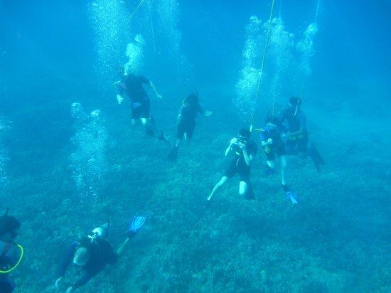 Maluaka Beach: snuba divers