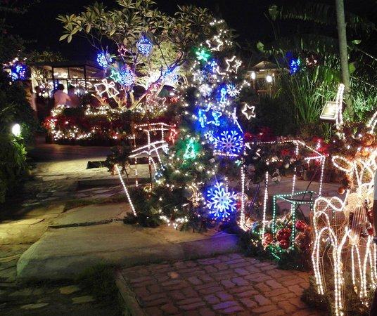 Waterside Resort Restaurant: Beautiful christmas deco all around the restaurant.