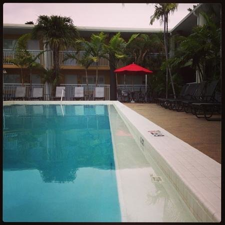 Best Western Hibiscus Motel: the pool and courtyard