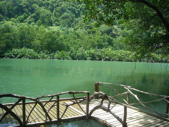 Palawan Mangrove Resort: The river