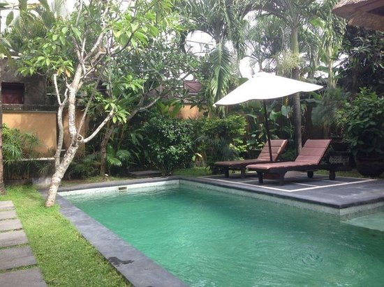 The Buah Bali Villas: Pool and deck chairs