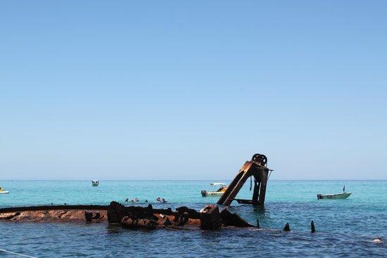 Adventure Moreton Island: Wrecks