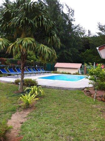 Villa Gaiarda: Piscina