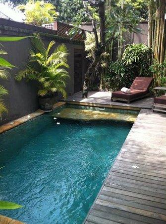 Jamahal Private Resort & SPA: Piscina privata in villa
