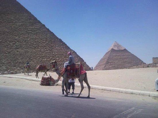 写真メリディアン ピラミッド枚