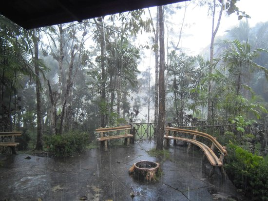 Sepilok Jungle Resort: Tropical rain