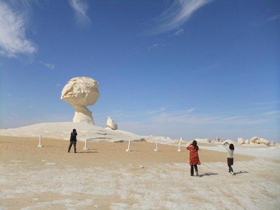 White Desert: マッシュルーム